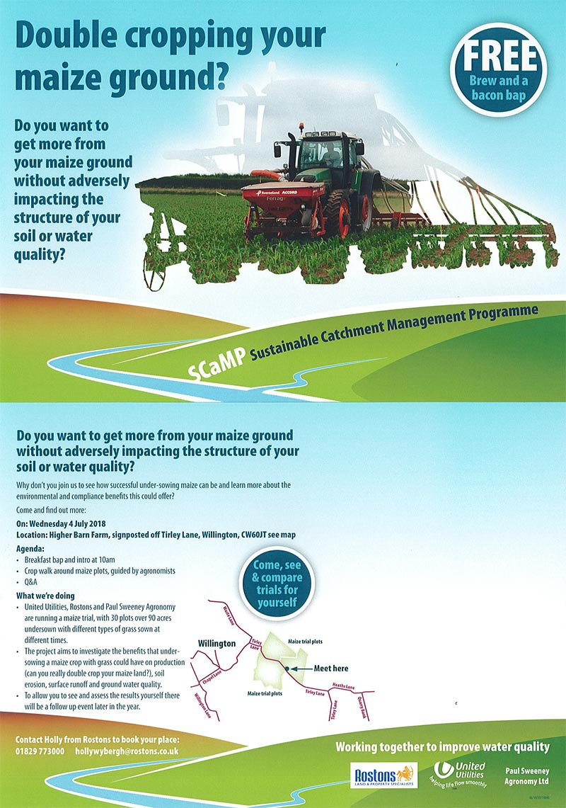 Double Cropping Your Maize Ground?