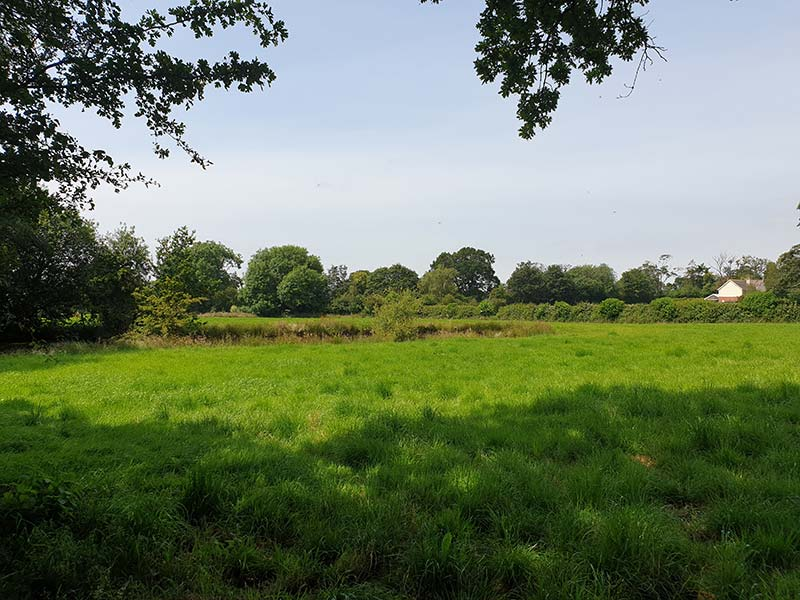 21.63 acres (8.75 ha) of Pasture Land off Sunnyside Road, Malpas, Cheshire