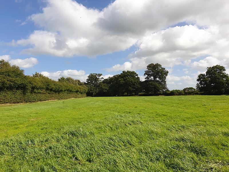 Land off Elton Lane, Winterley, Nr Sandbach, Cheshire