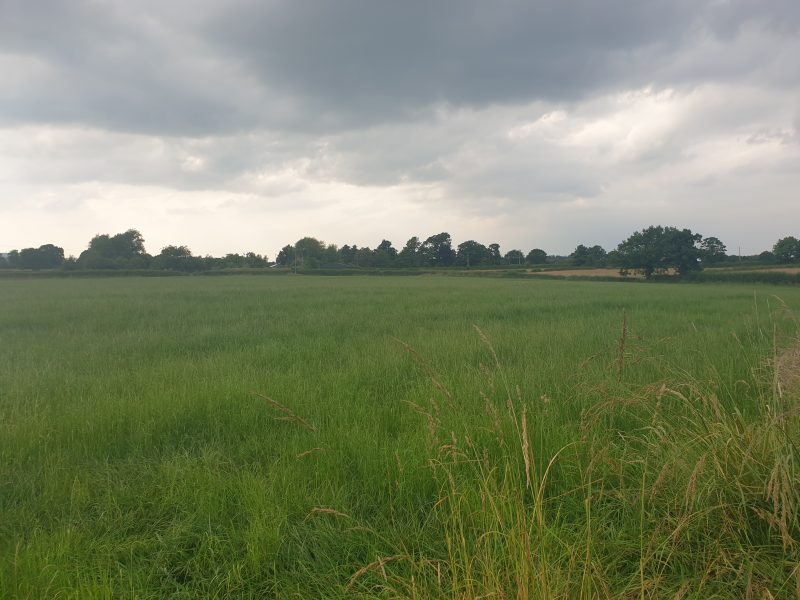 Land at Crewood Common Road, Crowton