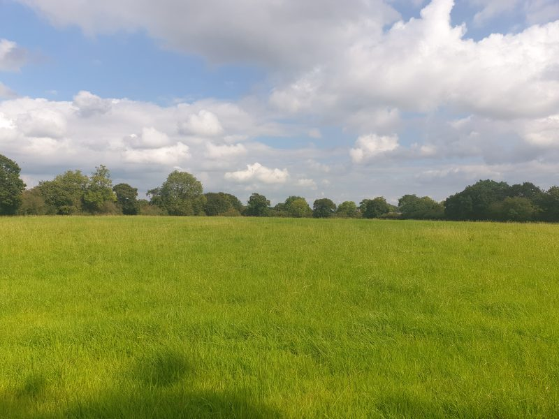 Land at Wood Green Lane, Church Minshull, CW5 6EE – Best & Final Offers – 12 Noon Friday 29th October 2021