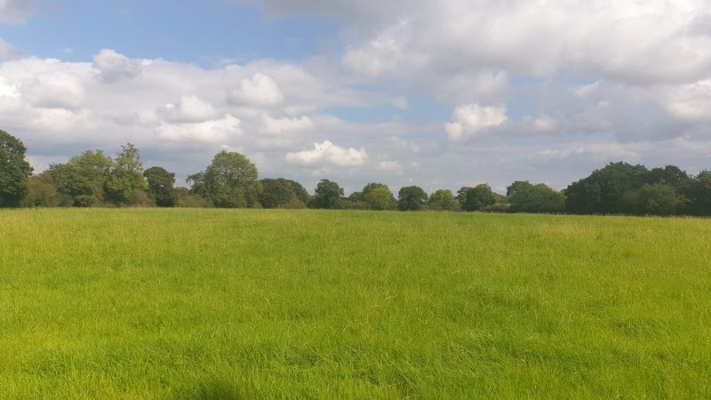 Best & Final Offers – 12 Noon Friday 29th October 2021 – Land at Wood Green Lane, Church Minshull, CW5 6EE